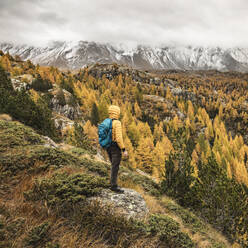 Hiker standing and looking over alpine plateau in autumn, Sondrio, Italy - MCVF00068