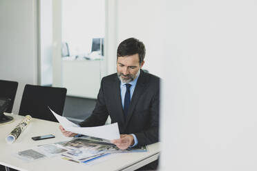 Mature businessman working on photographies at desk in office - MOEF02565