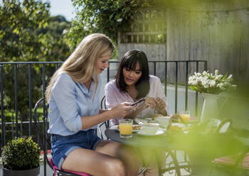 Two women checking smarthone, having breakfast at outdoor cafe - AJOF00039