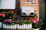 Mailbox, flower boxes and potted plants in front of a house, Seoul, South Korea. - GEM03269