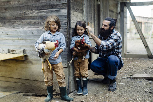 Father with two kids in chicken coop on an organic farm - SODF00307