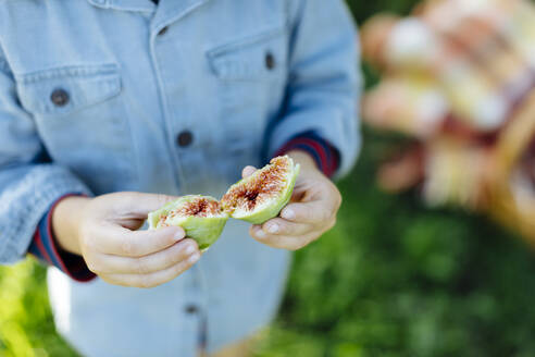 Close-up of child holding a fig outdoors - SODF00340