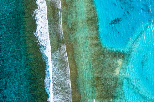 Maldives, South Male Atoll, Aerial view of coral reef - AMF07468