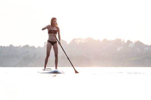 Young woman stand up paddle-boarding at sunset, Lake Starnberg, Germany - WFF00168