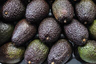 Full frame close up of fresh avocados. - MINF13178