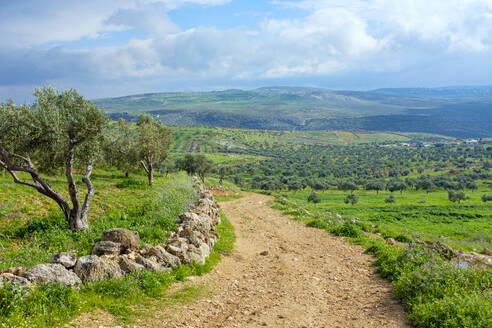 Masar Ibrahim trail from the village of Duma, Nablus, West Bank, Palestine - CAVF69136