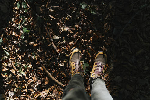 Hiking boots in autumn on a path with leaves - GEMF03297