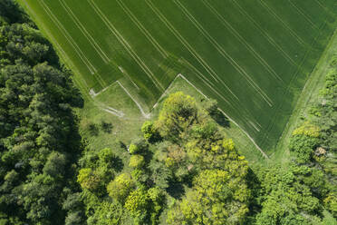 Germany, Bavaria, Aerial view of edge of countryside field surrounded by green forest - RUEF02358