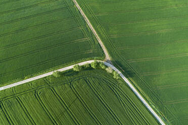 Germany, Bavaria, Aerial view of country roads cutting through green countryside fields in spring - RUEF02361