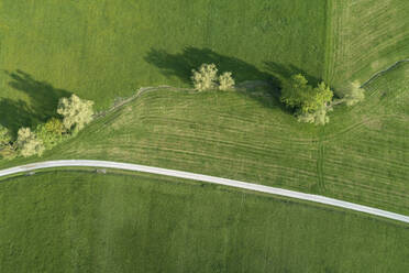 Germany, Bavaria, Aerial view of country road cutting through green countryside fields in spring - RUEF02364