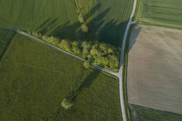 Germany, Bavaria, Aerial view of country roads cutting through green countryside fields in spring - RUEF02376