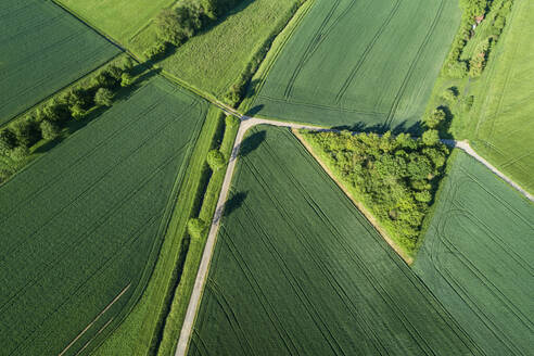 Germany, Bavaria, Aerial view of country roads cutting through green countryside fields in spring - RUEF02379