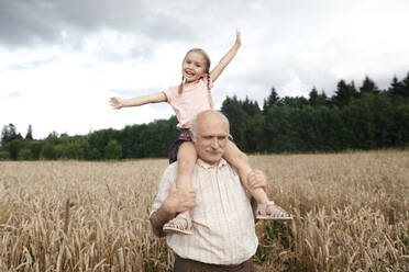 Portrait of happy little girl on grandfather's shoulders in an oat field - EYAF00694