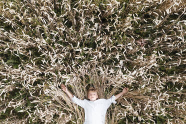 Blond boy lying in an oat field - EYAF00706