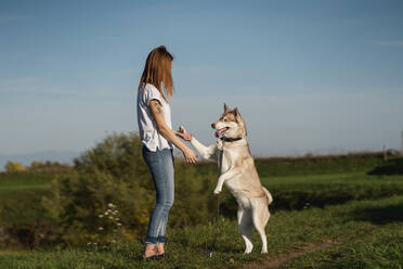Young woman teaching her dog in nature - MAUF03093