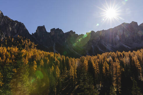 Autumn mountain landscape against the sun, Dolomites, Cortina, Italy - MRAF00430