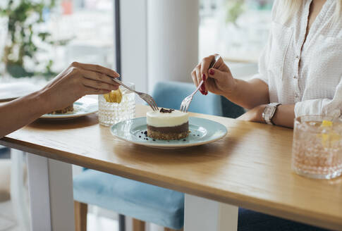 Anonymous young women sharing a cake at coffee shop - MOMF00825