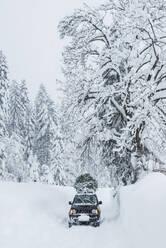 Austria, Salzburger Land, Lammertal, Car with Christmas tree on roof on snowy road - HHF05577