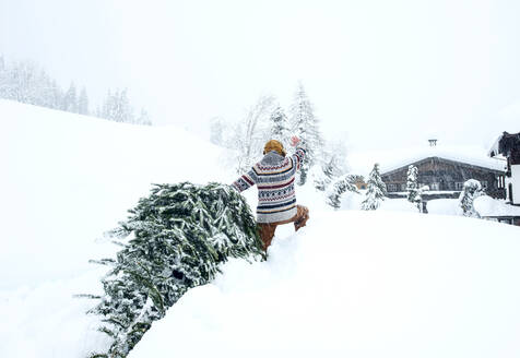 Man coming home, waving and pulling Christmas tree in the snow - HHF05580