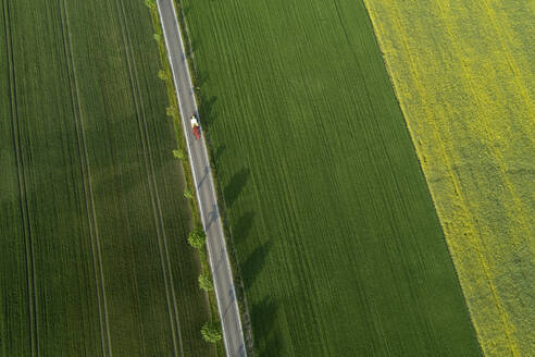 Germany, Bavaria, Aerial view of treelined road stretching between vast countryside fields - RUEF02398
