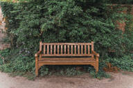 Empty wooden bench - AFVF04324