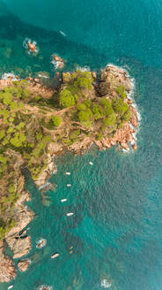 Aerial view of Cabo Roig rocky shore at Calella de Palafrugell, Spain - AAEF05862