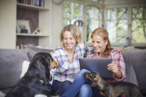 Two happy mature women with dog and laptop at home - FMKF06046