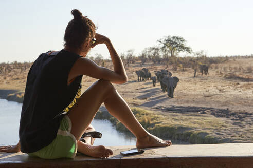 Woman watching a herd of elephants in the river from a viewpoint, Hwange National Park, Zimbabwe - VEGF01059