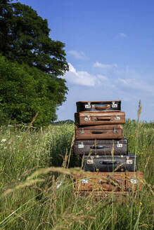 Stack of old leather suitcases on a meadow - PSTF00551