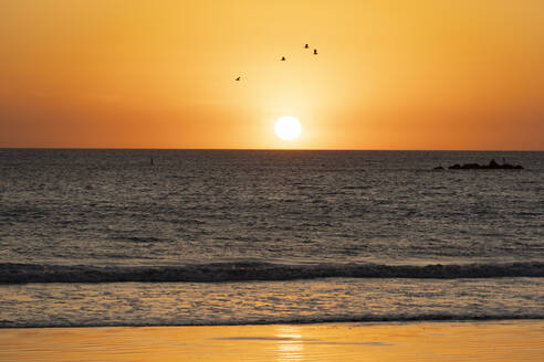 USA, California, Santa Monica, Moody orange sky over Pacific Ocean at sunset - SEEF00066
