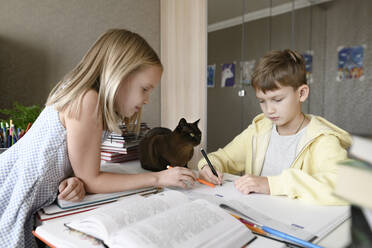 Brother and sister with a cat sitting at table at home doing homework together - EYAF00742