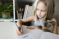Girl with a cat sitting at table at home doing homework - EYAF00751