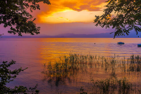 Italy, Province of Verona, Lazise, Lake Garda at moody sunset - MHF00524