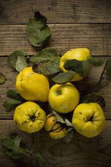 Fresh yellow quinces lying on wooden surface - ASF06553