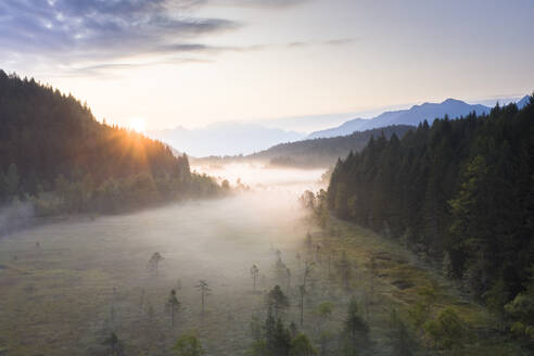 Sun rays at sunrise on fog covering the wetland of Pian di Gembro Reserve, aerial view, Aprica, Valtellina, Lombardy, Italy, Europe - RHPLF13090