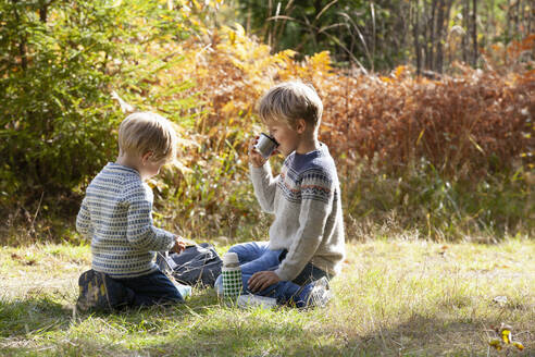 Brothers having picnic in forest on sunny day - CUF53714