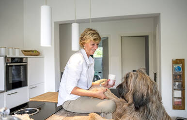 Smiling woman with dog in kitchen at home - BFRF02136