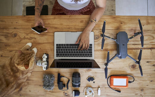 Person sitting at table with photografic equipment and ginger cat, using laptop, overhead view - VEGF01209