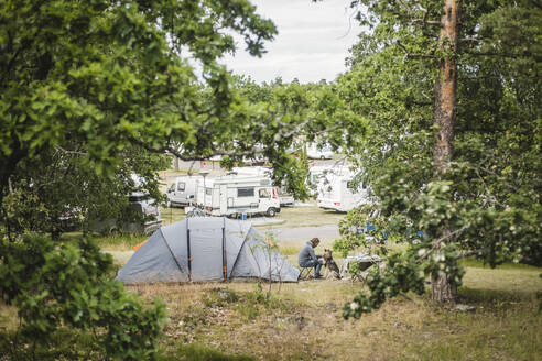 Man playing with dog by tent at camping site - MASF15632