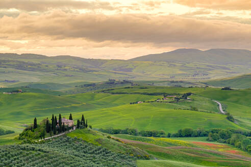 Podere Belvedere near San Quirico d'Orcia, Val d'Orcia, Tuscany, Italy - CAVF72163