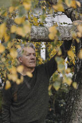 Portrait of a serious senior man at tree in garden - GUSF03105