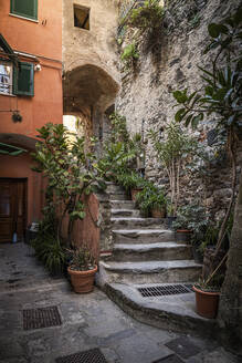 Narrow alley and stairs in Vernazza, Liguria, Italy - MSUF00103