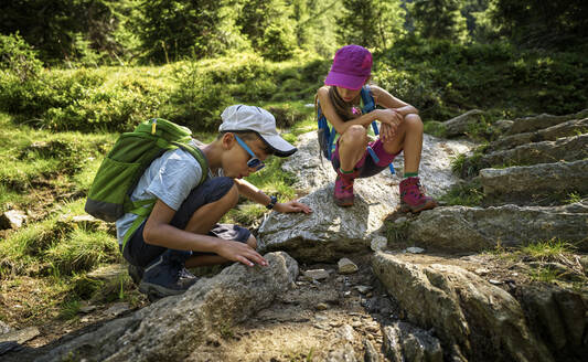 Boy and girl on a hiking trip watching ants, Passeier Valley, South Tyrol, Italy - DIKF00319
