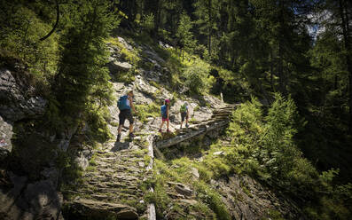 Mother with two children hiking in alpine scenery, Passeier Valley, South Tyrol, Italy - DIKF00322