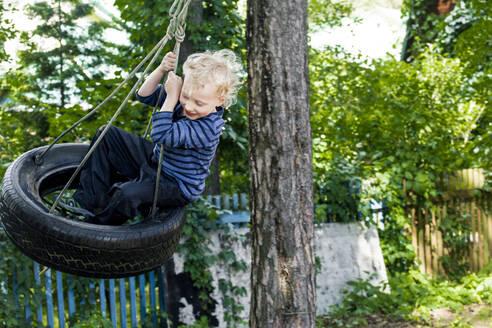 Little boy sitting on tire swing - IHF00228