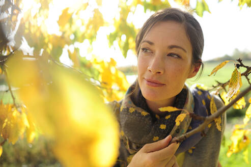 Portrait of woman at twigs with autumn leaves looking at camera - ECPF00802