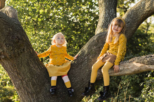 Two little girls dressed in yellow sitting on tree trunk - NMSF00379