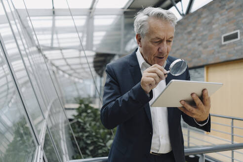Senior businessman with magnifying glass reading tablet in office - JOSF04219