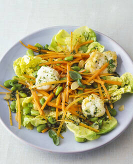 Lettuce with cauliflower, carrots and green beans - PPXF00290