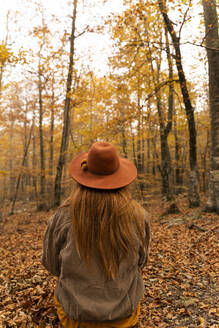 Back view of redheaded young woman with hat sitting in autumnal forest - AFVF04884